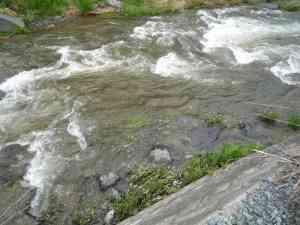水かさの増えた鹿留川