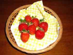 初物イチゴ