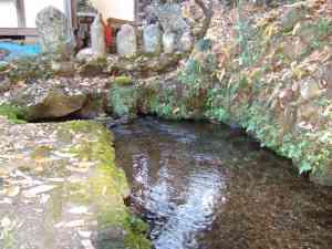 永寿院の湧水