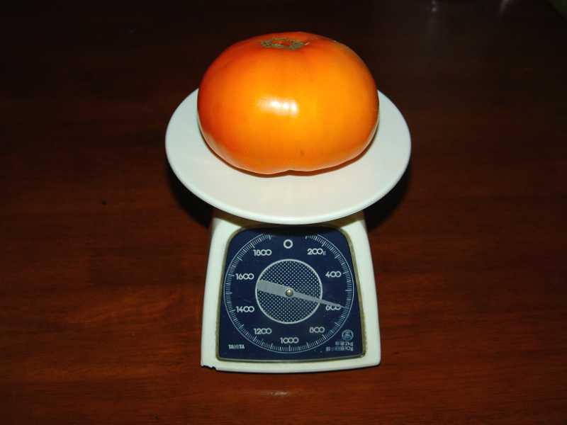 画像2(ビッグなトマト)