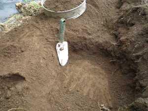 画像1(大根の畝作り)