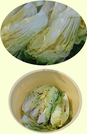 画像2(白菜漬け)