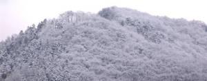 画像5(雪の山)