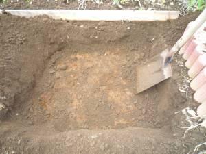 画像2(畑の穴掘り)