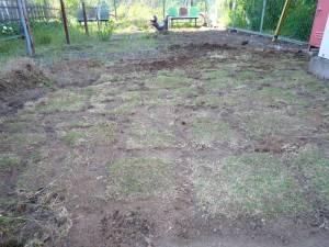 画像4(公園の芝生張り)