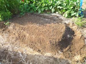 画像6(雨避けトマト跡の畝作り)