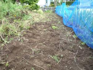画像7(空き地の草取り)