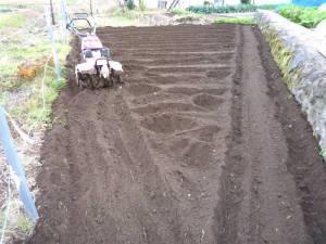 画像8(畑の耕し)
