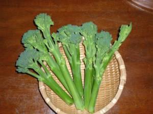 画像2(茎ブロッコリー)