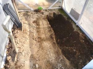 画像5(ビニールハウス内の穴掘り)