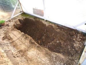 画像6(ビニールハウス内の穴掘り)