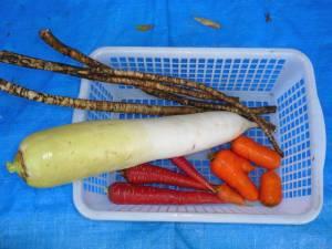 画像8(掘り出した野菜)