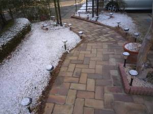 画像1(初雪)