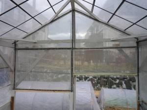 画像4(ビニールハウスのネット張り)