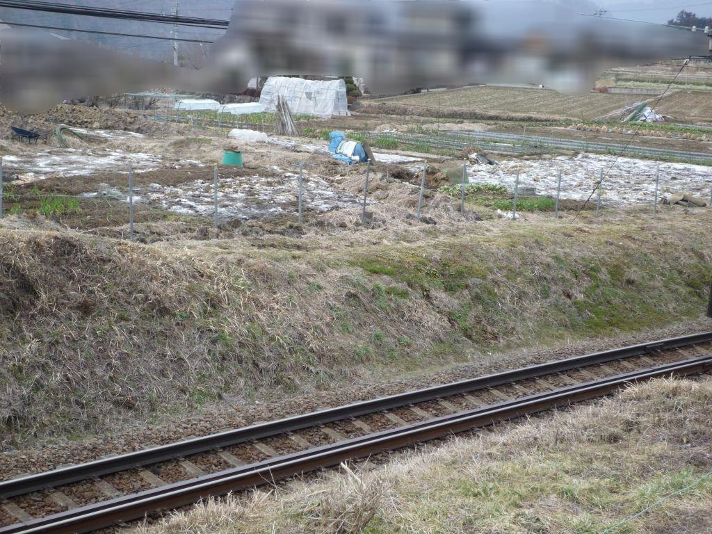 画像3(線路向こうの畑)