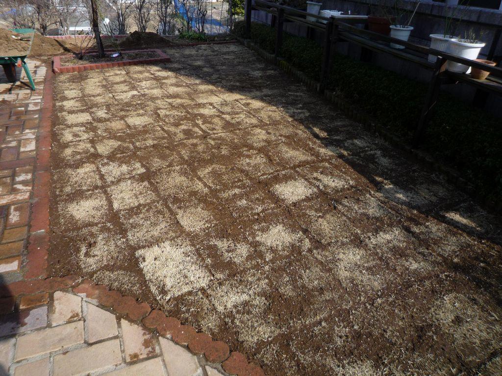 画像1(芝生の張り替え)