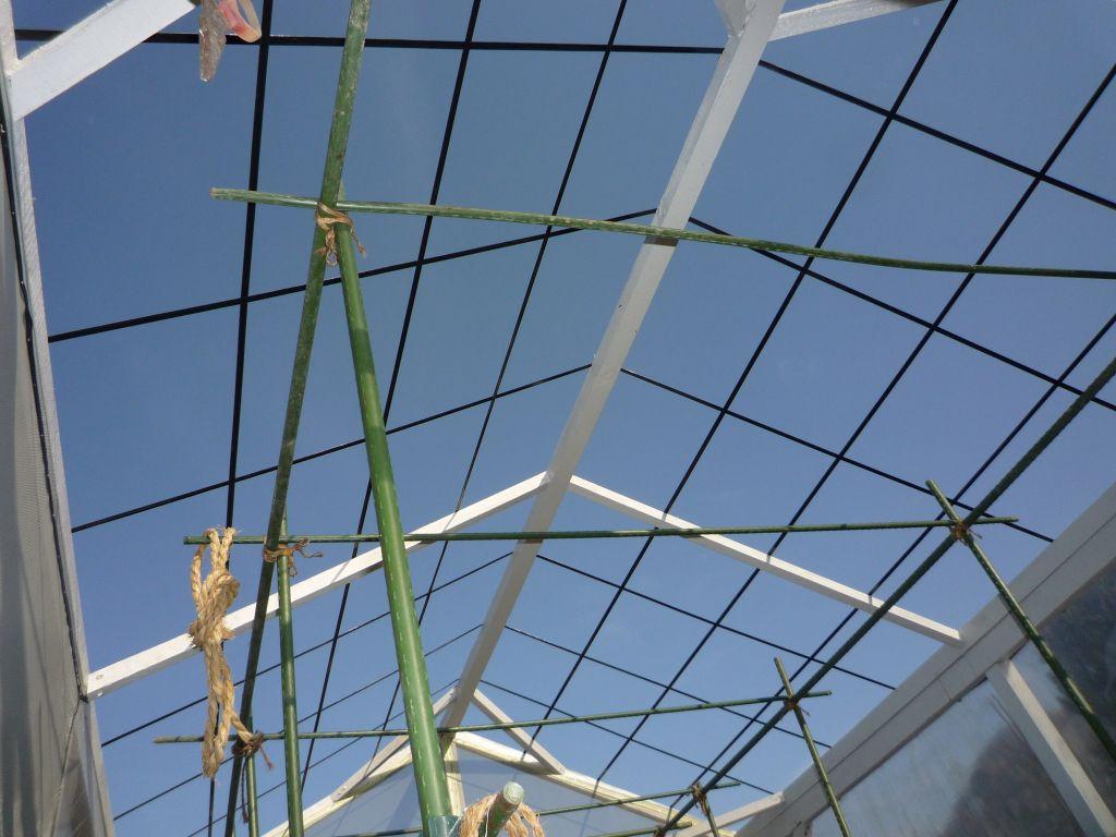 画像3(温室の屋根)