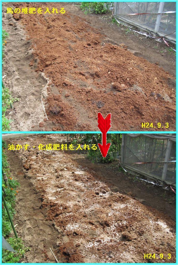 画像2(堆肥・油かす。化成肥料を入れる)