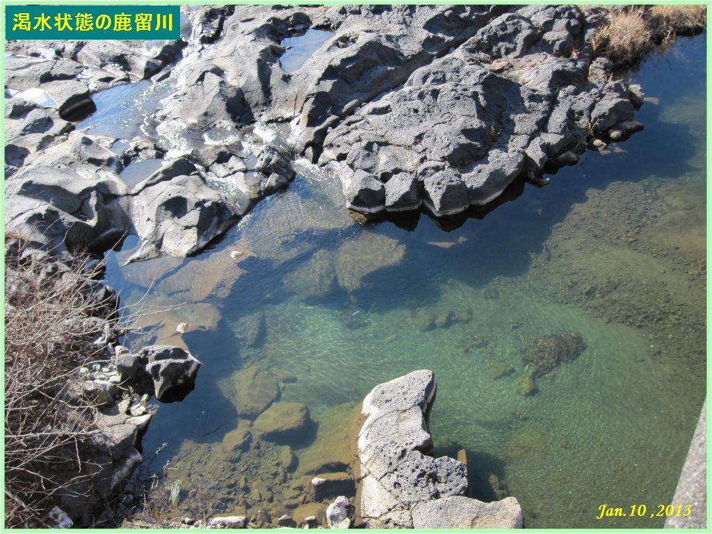 画像8(渇水状態の鹿留川)