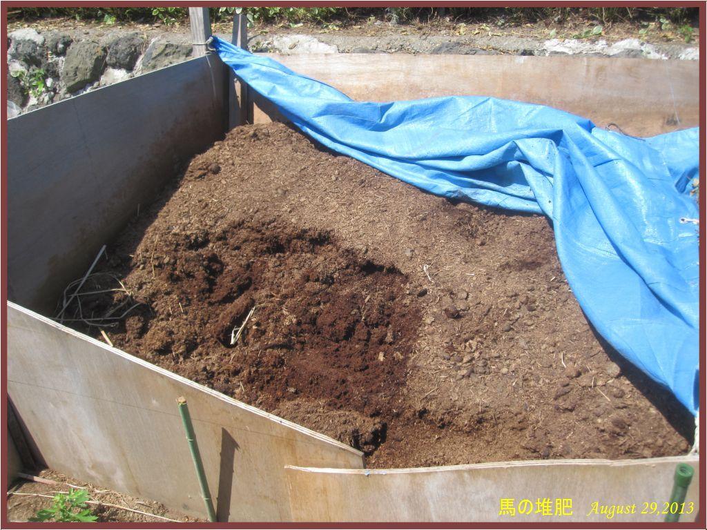 画像1(馬の堆肥)