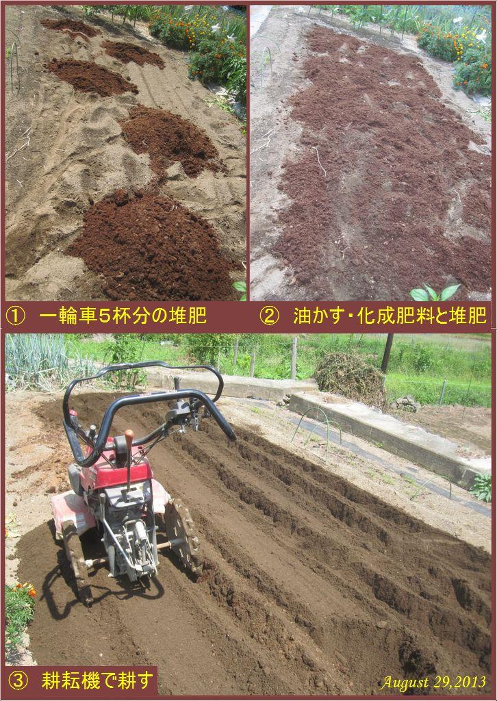画像2(堆肥・油かす・化成肥料投入後耕耘)