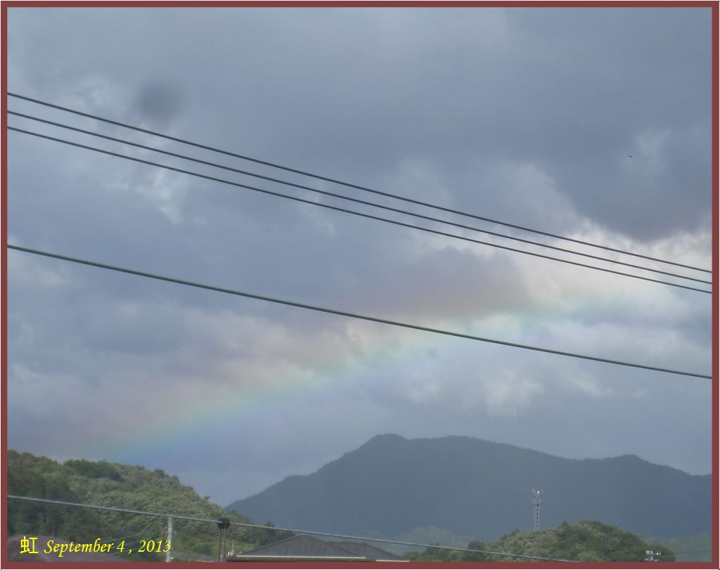 画像5(虹)