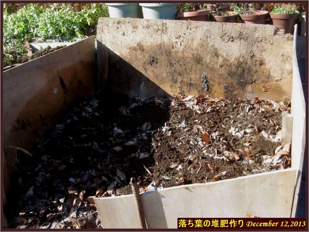 画像5(落ち葉の堆肥作り)