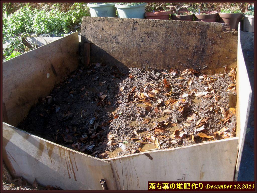 画像6(落ち葉の堆肥作り)