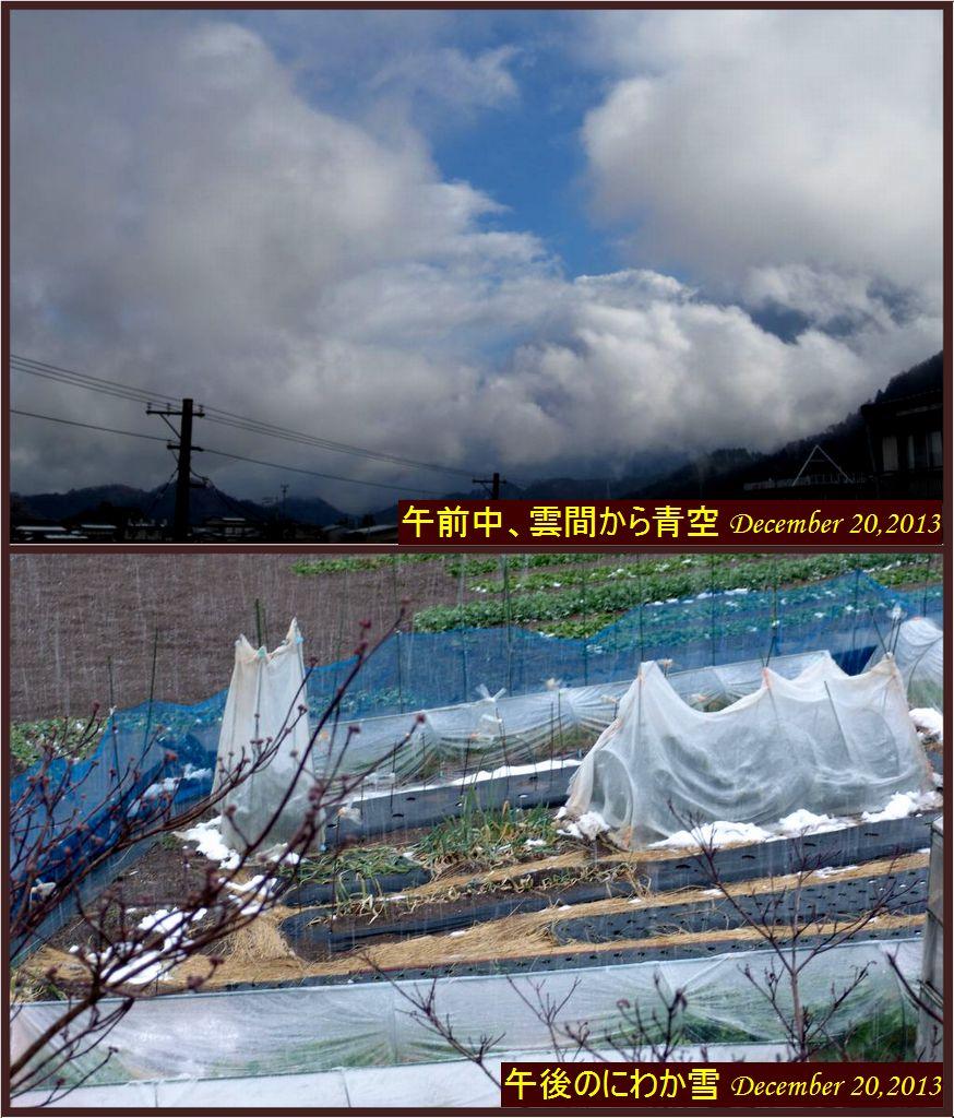 画像4(荒れた天気)