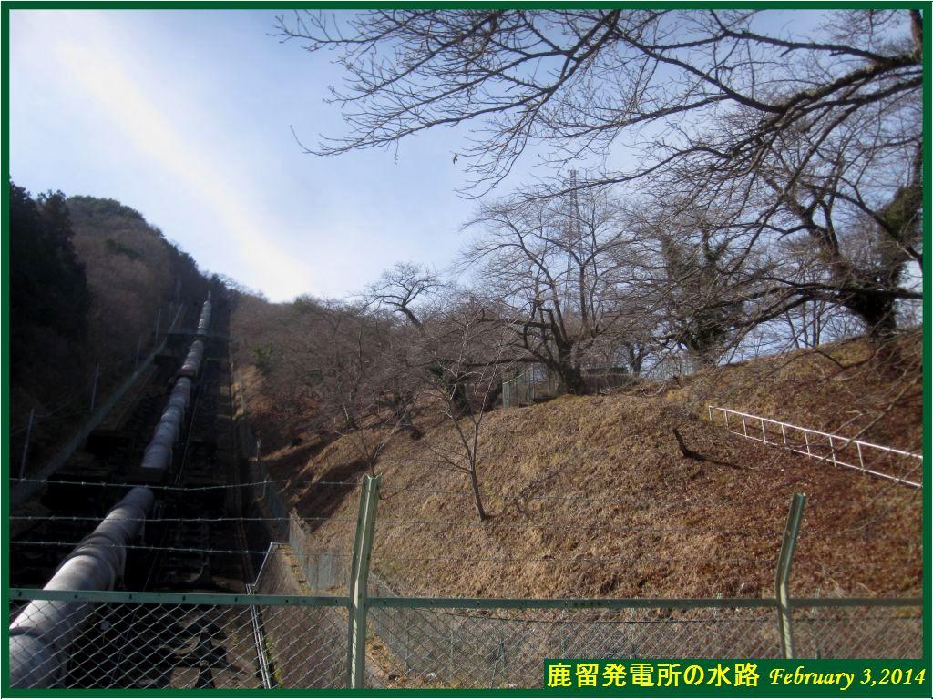 画像4(鹿留発電所の水路)