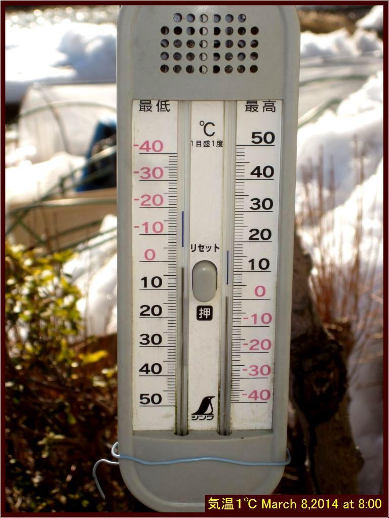 画像1(今朝の気温)