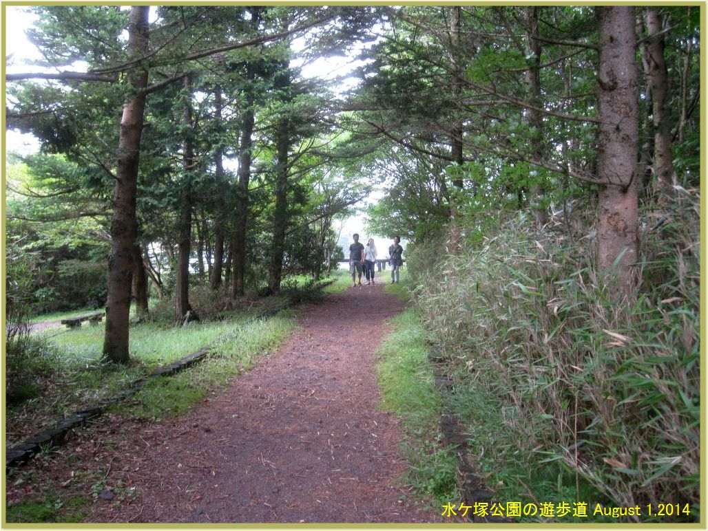 画像9(水ケ塚公園遊歩道)