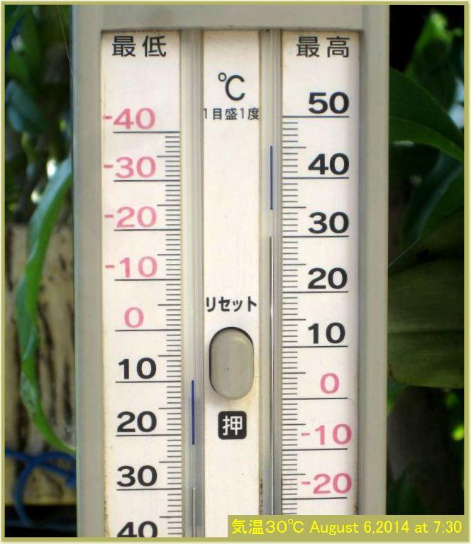 画像1(朝の気温30℃)