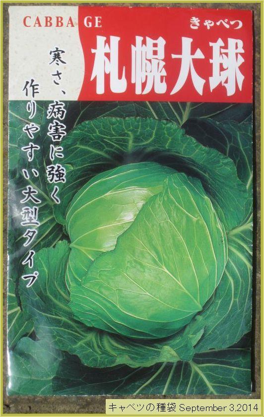 画像2(キャベツの種袋)
