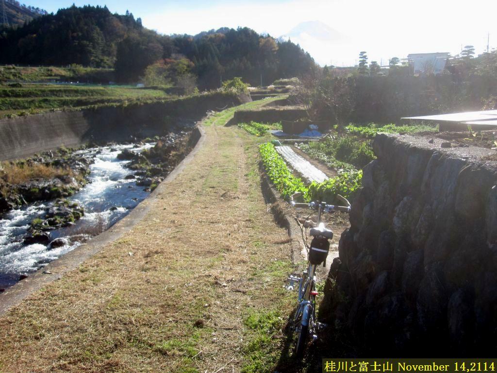 画像14(桂川と富士山)