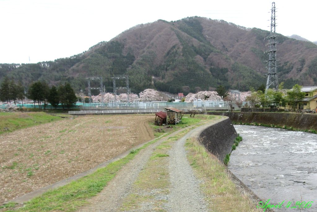 画像9(桂川・宮下橋付近)