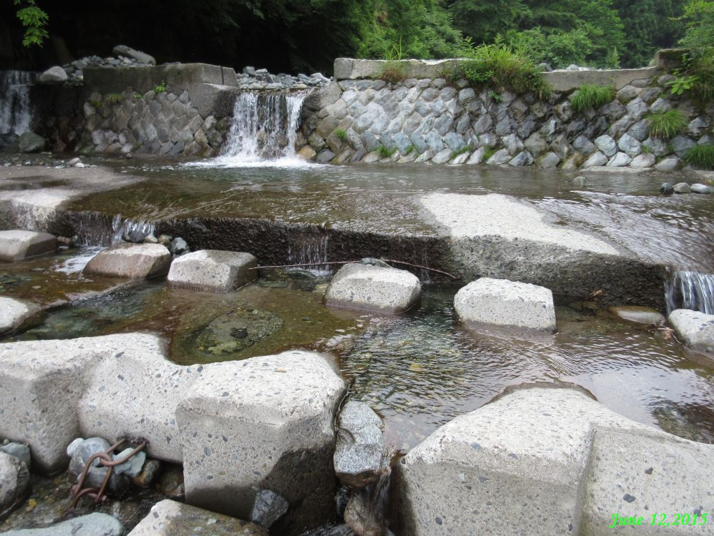 画像5(鹿留川上流の堰堤)