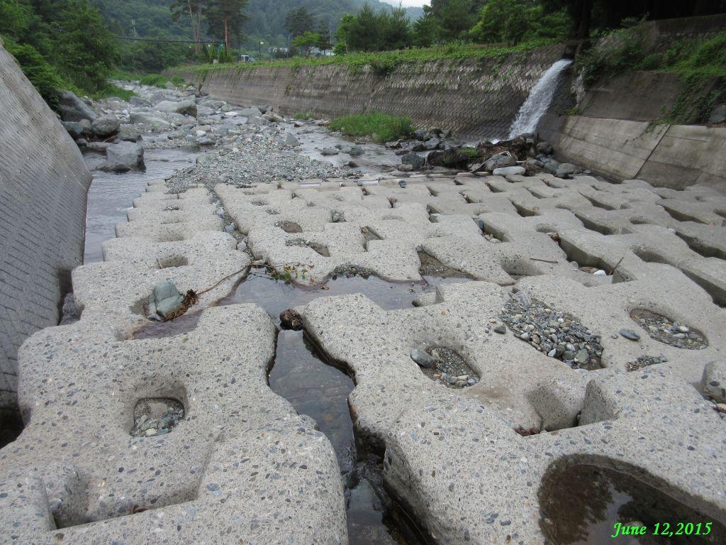 画像6(鹿留川上流の堰堤の下流域)