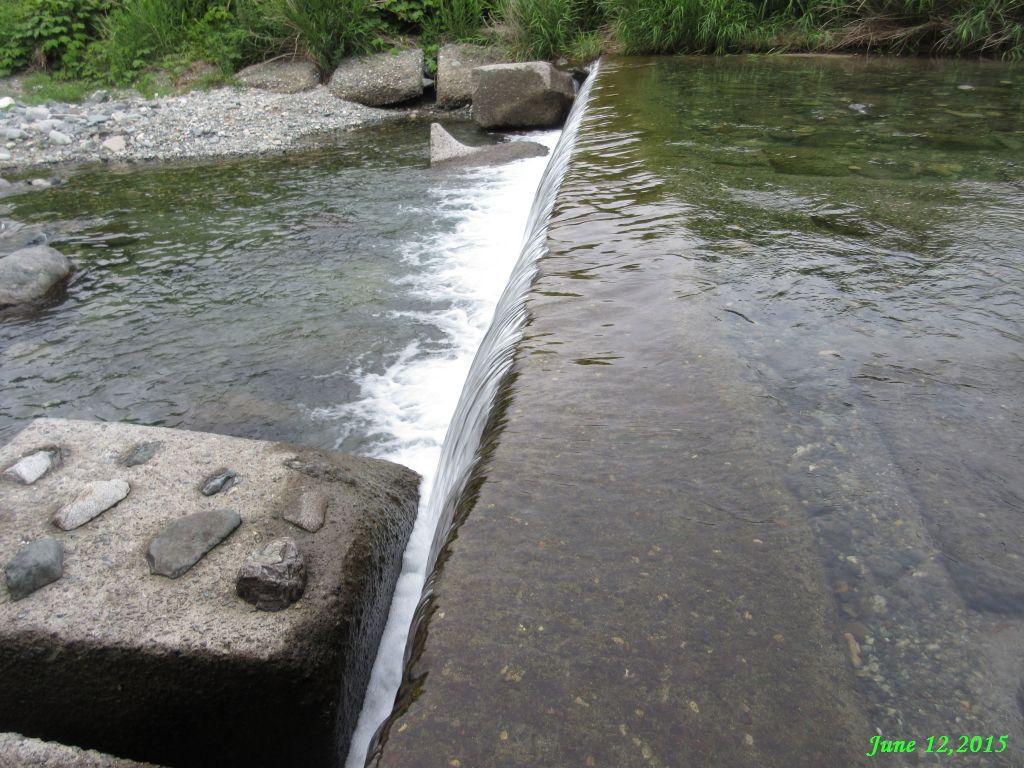 画像8(岩下橋の上の堰堤)
