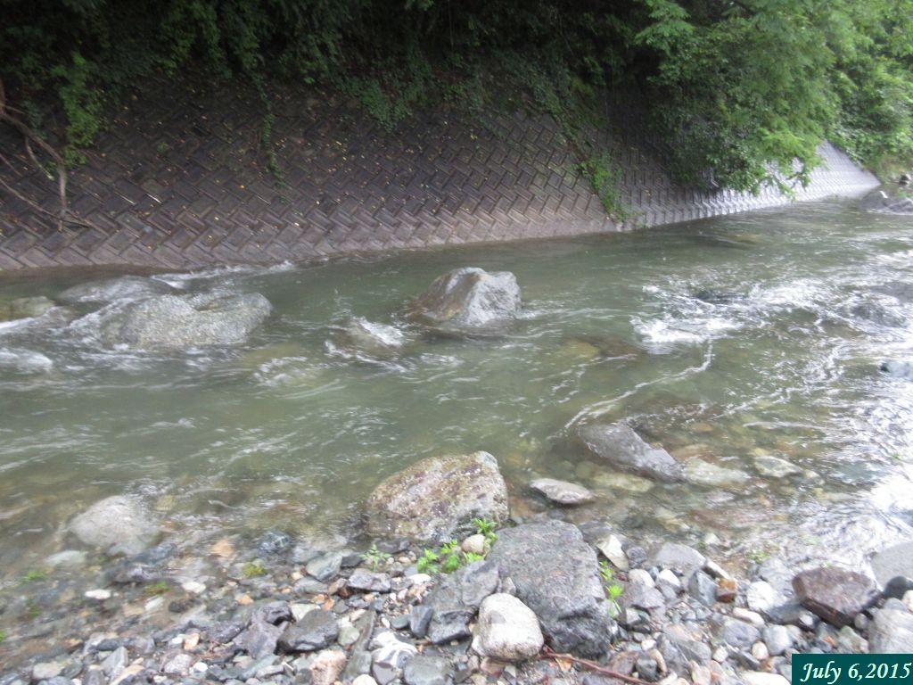 画像8(鹿留川)