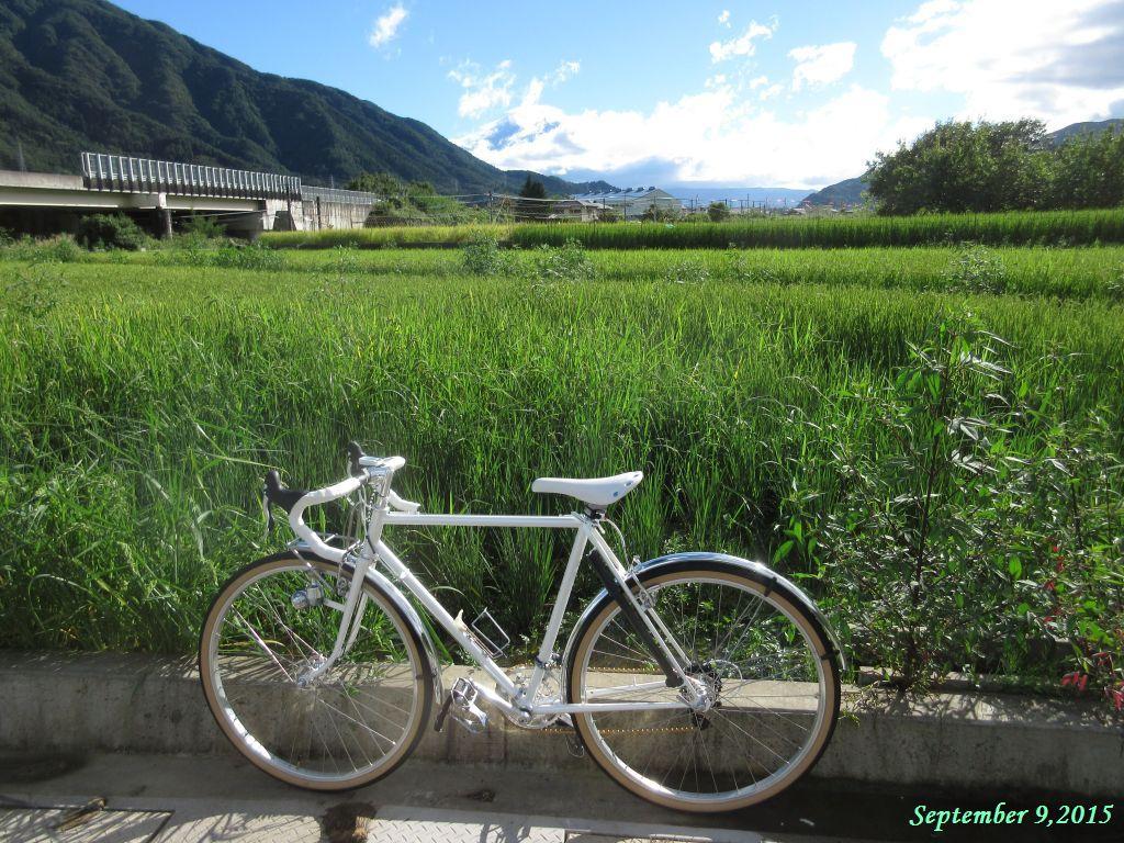 画像12(笠雲がかかった富士山)