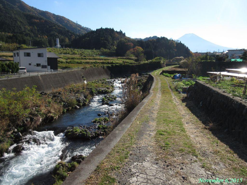 画像13(桂川・大池橋付近)
