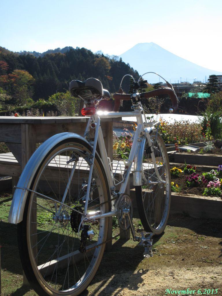 画像14(桂川・大池橋付近)