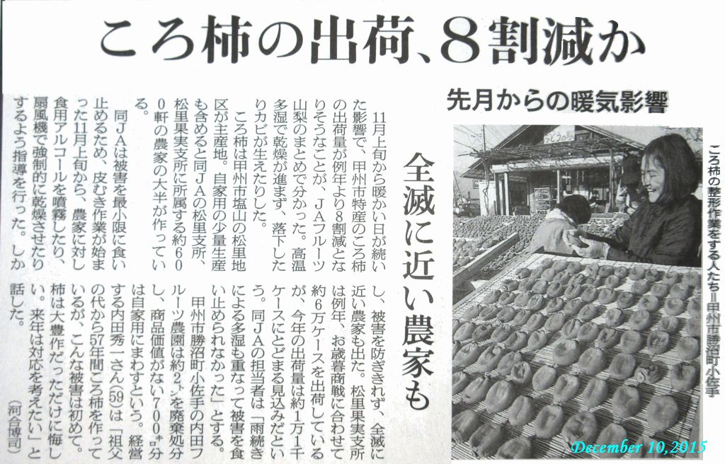 画像6(新聞記事)