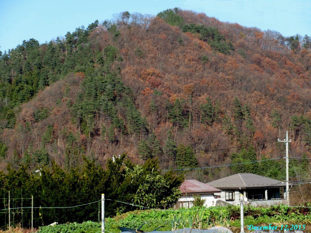画像1(周囲の山)