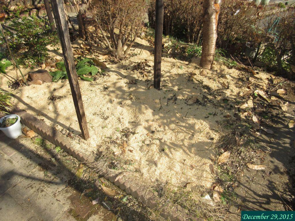 画像14(籾殻敷き)