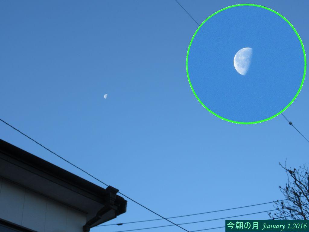 画像8(月)