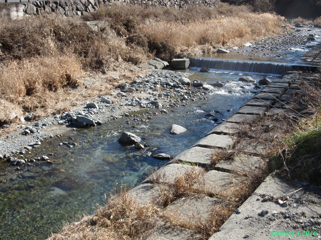 画像5(鹿留川・岩下橋)