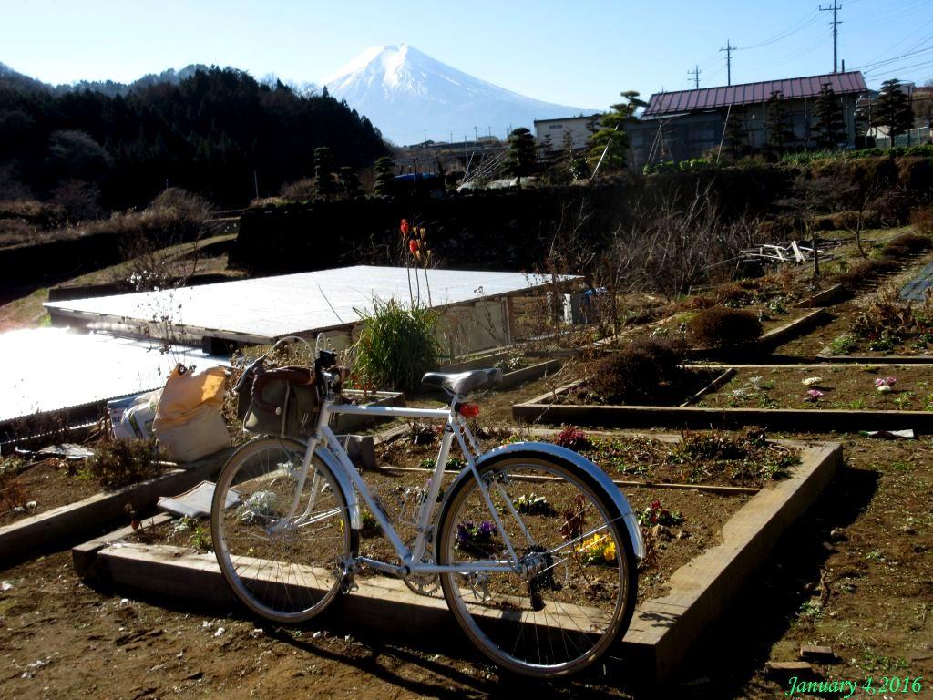 画像8(桂川・大池橋上の公園)