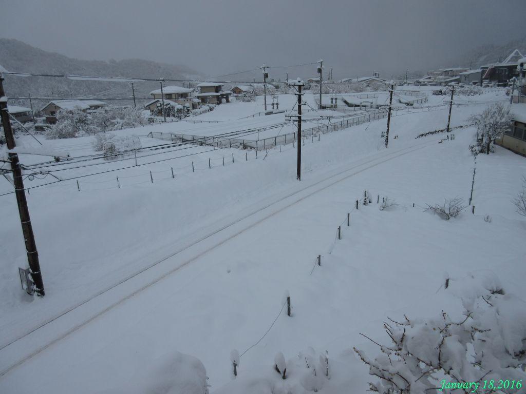 画像2(雪の一日9時頃)